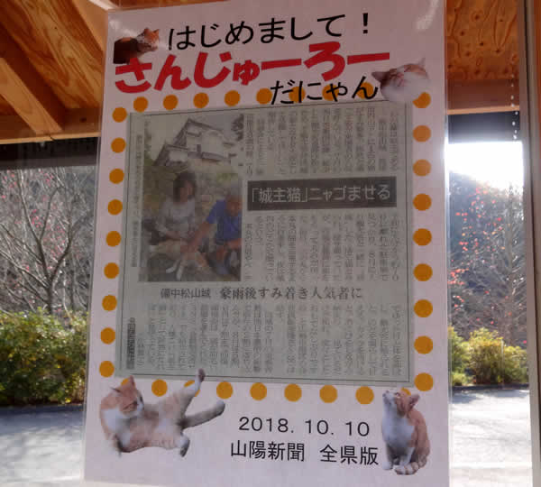 備中松山城の猫城主さんじゅーろーちゃん